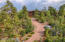 3321 W Falling Leaf Road, Show Low, AZ 85901
