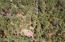 Lot 60E Lakeside Summer Homes, Lakeside, AZ 85929