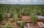 5841 Hidden Oak Drive, Pinetop, AZ 85935
