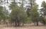 1457 Low Mountain Trail, Heber, AZ 85928