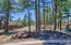 TBD Osprey Court, Pinetop, AZ 85935