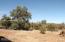 5 County Road N8689, Concho, AZ 85924
