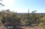 1711 Thistle Road, Pinedale, AZ 85934