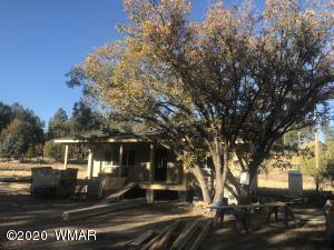 520 Rim Drive, Pinedale, AZ 85934