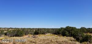 Lot 396 Woodland Valley Ranch, St. Johns, AZ 85936
