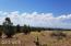 Lot 396 Woodland Valley Ranch, St. Johns, AZ 85936