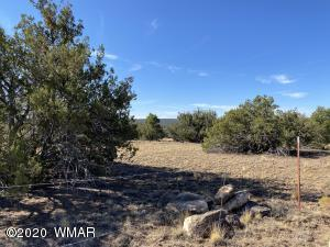 TBD County Road 8014, Concho, AZ 85924