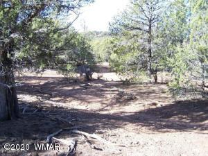 000 Timber Ranch Road, Linden, AZ 85901