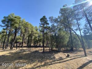 4520 W Hawthorn Road, Show Low, AZ 85901
