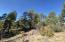 4520 W Hawthorn Road, Show Low, AZ 85901
