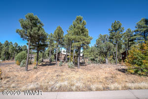 300 E Huckleberry Lane, Show Low, AZ 85901