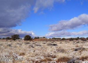 TBD Hanja Trail Road, Snowflake, AZ 85937
