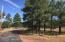 TBD Smith Ranch Road (Lot 010J), Show Low, AZ 85901