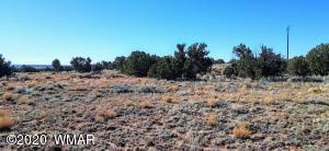 3795 Bum Heel Ranch Road, Snowflake, AZ 85937