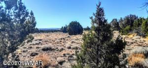 3734 Bum Heel Ranch Road, Snowflake, AZ 85937