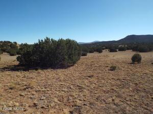 40 County Road 3048, Concho, AZ 85924