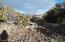 Lot 56 Windsor Valley Ranch, Concho, AZ 85924