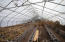 Expansive greenhouse