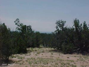 L-179-180 Red Sky Ranch, CR N7104, St. Johns, AZ 85936