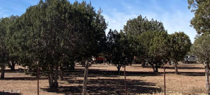 1854 Turkey Lake Road, Show Low, AZ 85901