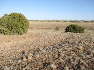 60 County Road 5126, Concho, AZ 85924