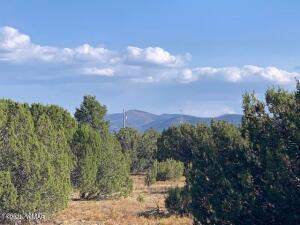 174 Co Rd 3187 9 Acres Lot 3, Vernon, AZ 85940