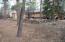 2701 S Wapiti Lane, Pinetop, AZ 85935