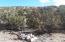 2 CR 5035, Concho, AZ 85924