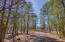 521 E WOODLAND LAKE RD, Pinetop, AZ 85935