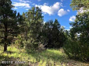 2238 Fairway Drive, Overgaard, AZ 85933