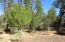 1305 Gwin Way, Lakeside, AZ 85929