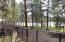 1305 Gwin Way, Lakeside, AZ 85929