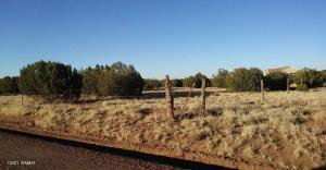 3857 Ramsey Road, Snowflake, AZ 85937
