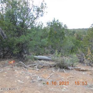 3630 Bobcat Trail, Overgaard, AZ 85933