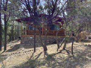 3399 Panorama Drive, Overgaard, AZ 85933