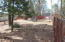 Lakeside, AZ 85929