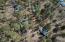2391 S Penrod Lane, Pinetop, AZ 85935