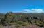 Endless green views