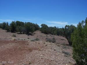 80 OLD HUNT RD, Concho, AZ 85924