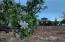 5061 Schneider Road, Snowflake, AZ 85937
