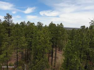 TBD S Cedar Pine Lane, Pinetop, AZ 85935