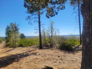TBD Off Timberland Acres, Linden, AZ 85901