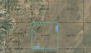 Parcel 4 40 acres Sec 14 T13NR29E N6112, St. Johns, AZ 85936