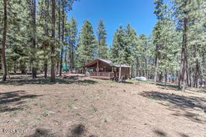 2122 Tall Trees Loop, Forest Lakes, AZ 85931