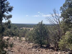 Show Low Pines Unit 8 Lot 314, Concho, AZ 85924