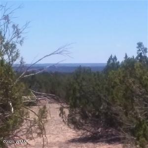 Lot 220 Sierra Mountain Ranch, CR N7329, St. Johns, AZ 85936