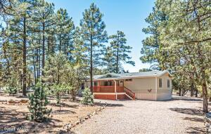 Wonderful Mountain Home Surrounded By Tall Pines!