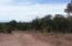 59 County Road 8562 (MOPAR BLVD), Concho, AZ 85924