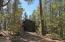 3057 Red Robin Road, Pinetop, AZ 85935