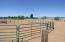 Animal pen, fenced area